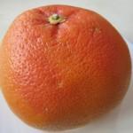 фрукты, цитрусовые