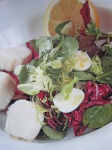 Блюда с морепродуктами. Салаты